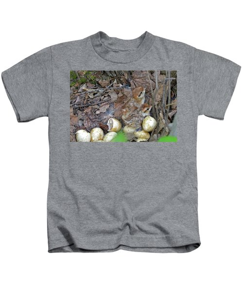 Just Hatched Ruffed Grouse Chicks Kids T-Shirt