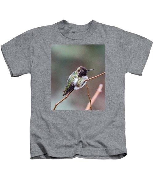 Karisa's Hummingbird.2 Kids T-Shirt