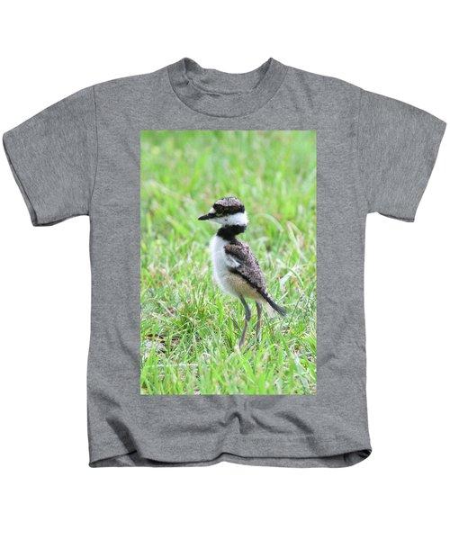 Killdeer Chick 3825 Kids T-Shirt