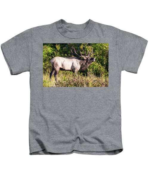 Large Bull Elk Bugling Kids T-Shirt