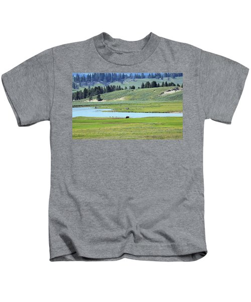 Lone Bison Out On The Prairie Kids T-Shirt