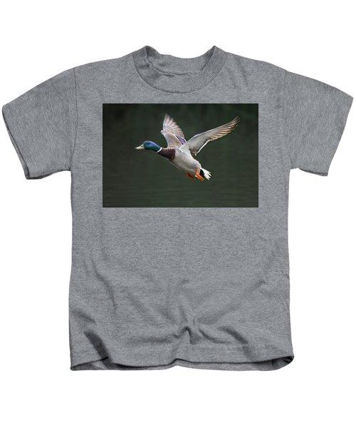 Mallard Drake In Flight Kids T-Shirt