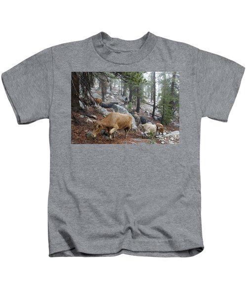 Mountain Climbing Kids T-Shirt