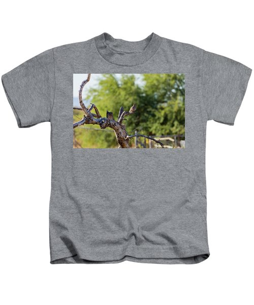 Mourning Dove In Old Tree Kids T-Shirt