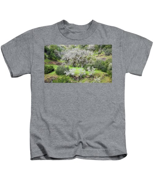 Mysterious Landscape In Sonoma County Kids T-Shirt