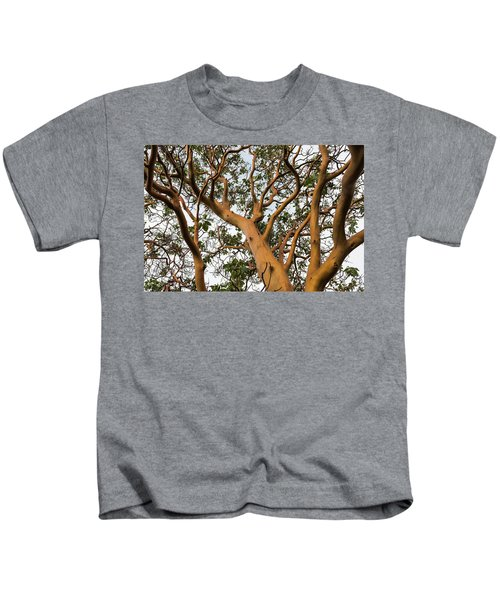 Pacific Madrone Trees Kids T-Shirt