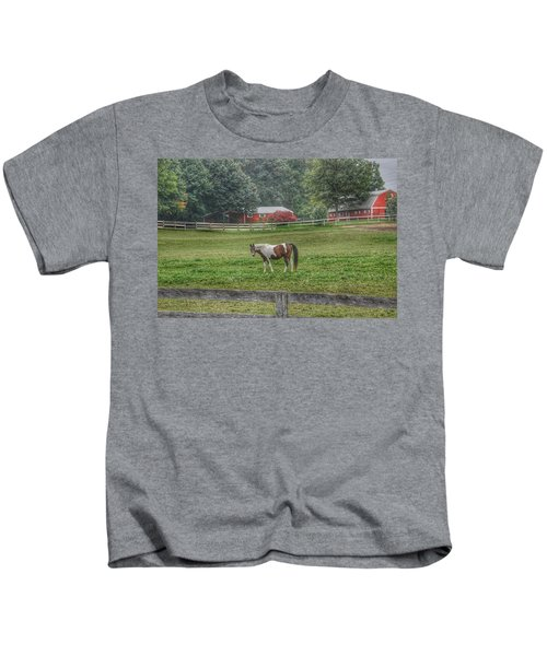 1005 - Painted Pony In Pasture Kids T-Shirt