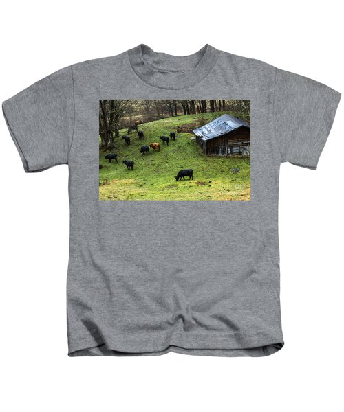 Pasture Field And Cattle Kids T-Shirt