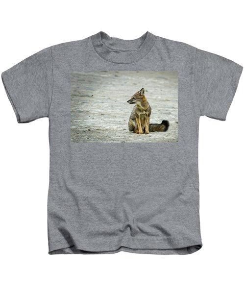 Patagonia Fox - Argentina Kids T-Shirt