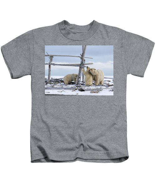 Playtime In The Arctic Kids T-Shirt
