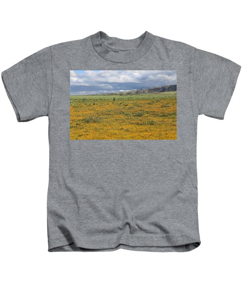 Poppies Field In Antelope Valley Kids T-Shirt