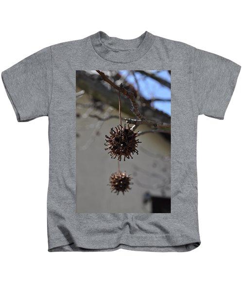 Prickly Liquidamber Pod Kids T-Shirt