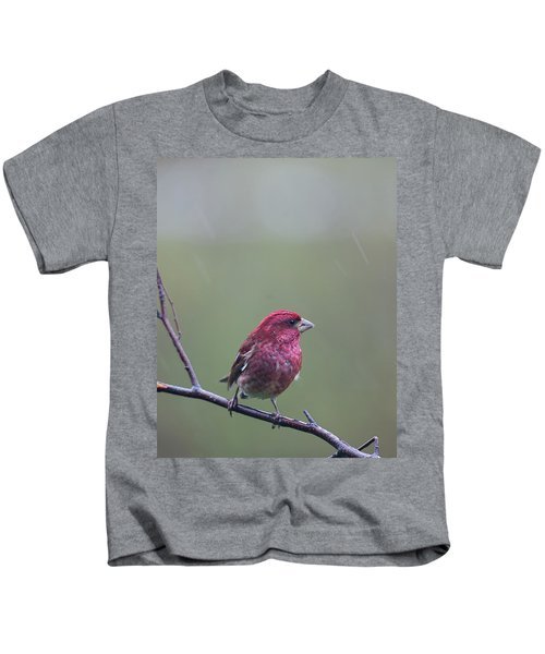 Rainy Day Finch Kids T-Shirt