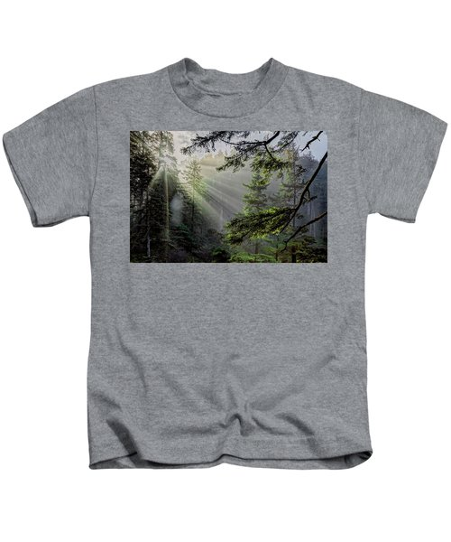 Morning Rays Through An Oregon Rain Forest Kids T-Shirt