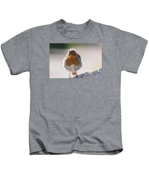 Robin Front Kids T-Shirt