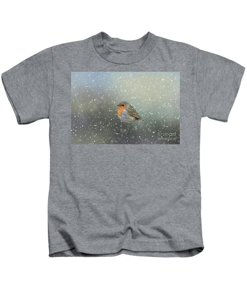 Robin In Winter Kids T-Shirt