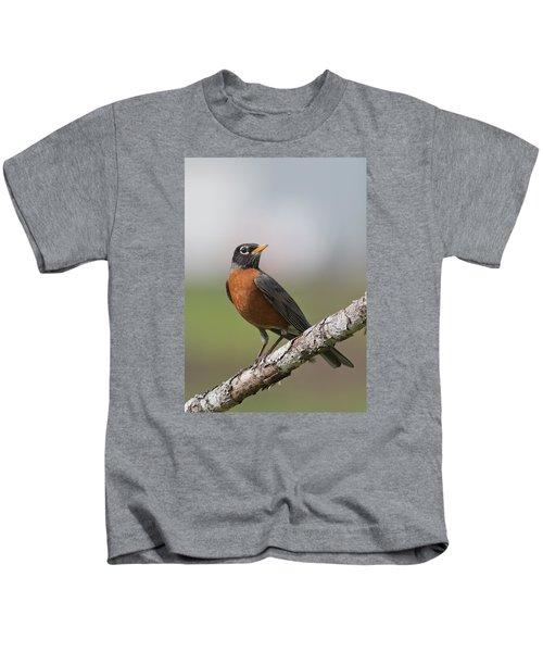 Robin Red Breast Kids T-Shirt