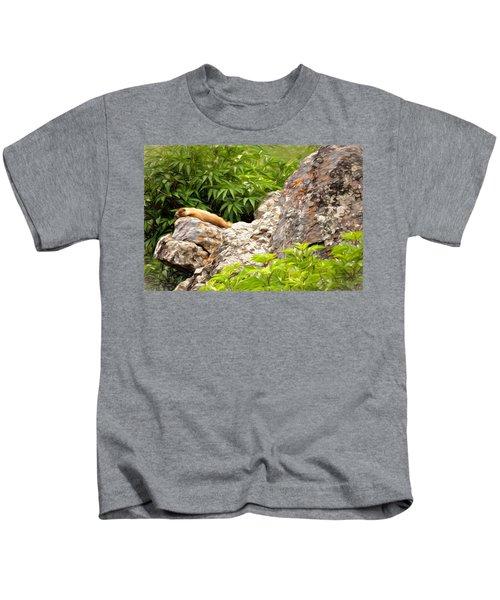 Rock Chuck Kids T-Shirt by Lana Trussell