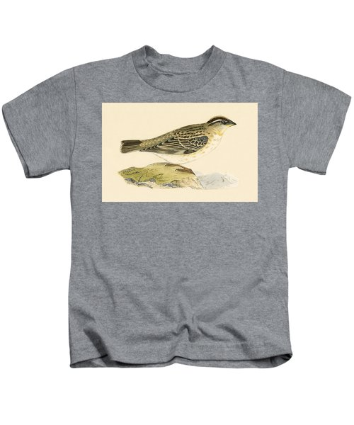 Rock Sparrow Kids T-Shirt by English School