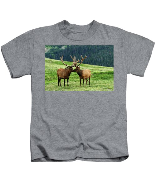 Rocky Mountain Elk 2 Kids T-Shirt