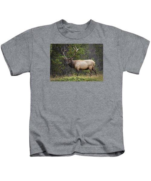 Rocky Mountain National Park Bull Elk Kids T-Shirt