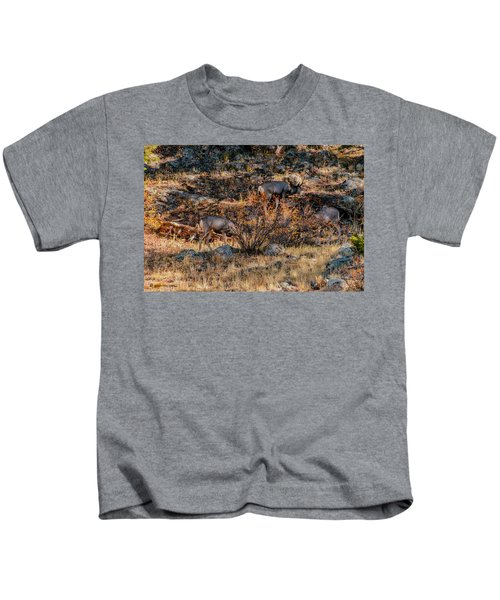 Rocky Mountain National Park Deer Colorado Kids T-Shirt