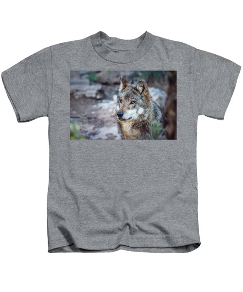 Sancho Searching The Area Kids T-Shirt