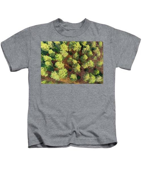 Scots Pines Kids T-Shirt