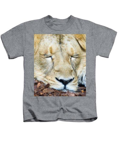Sleeping Lion Kids T-Shirt