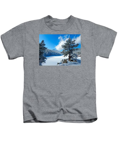 Snow At Beaver Brook Kids T-Shirt