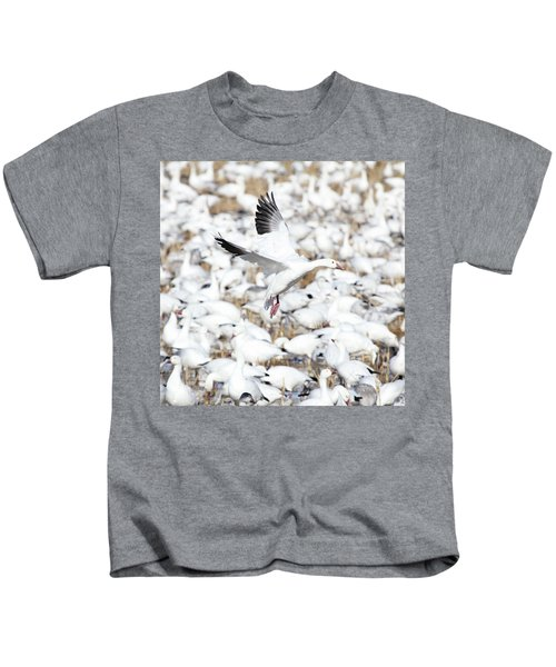 Snow Goose Lift-off Kids T-Shirt