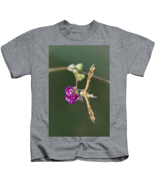 Spiderling Plume Moth On Wineflower Kids T-Shirt