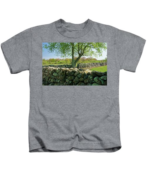 Stone Wall In Rhode Island Kids T-Shirt