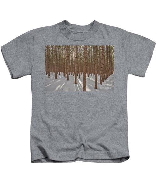 Sunlight Filtering Through A Pine Forest Kids T-Shirt