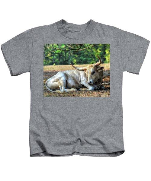 Texas Longhorn Gentle Giant Kids T-Shirt