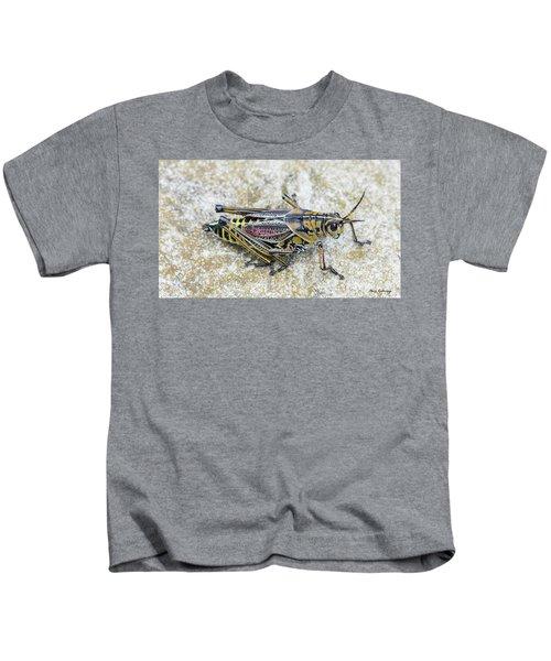 The Hopper Grasshopper Art Kids T-Shirt