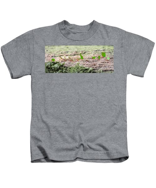 The Leaf Parade  Kids T-Shirt by Betsy Knapp