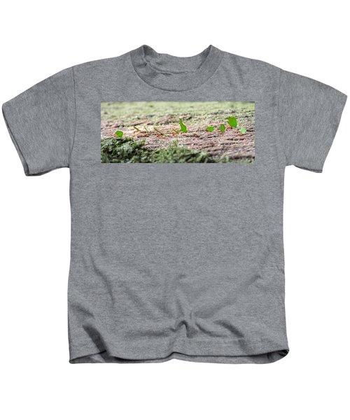 The Leaf Parade  Kids T-Shirt