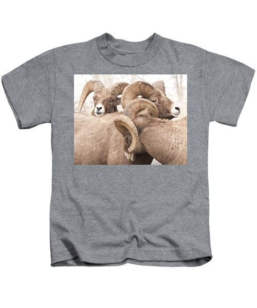 Three Bighorn Rams Kids T-Shirt