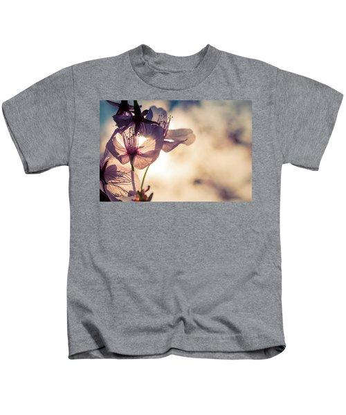 Tree Blossoms Backlit By The Afternoon Sun Kids T-Shirt