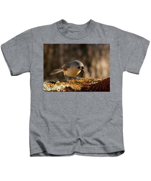 Tufted Titmouse In Fall Kids T-Shirt