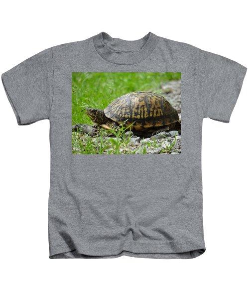 Turtle Crossing Kids T-Shirt