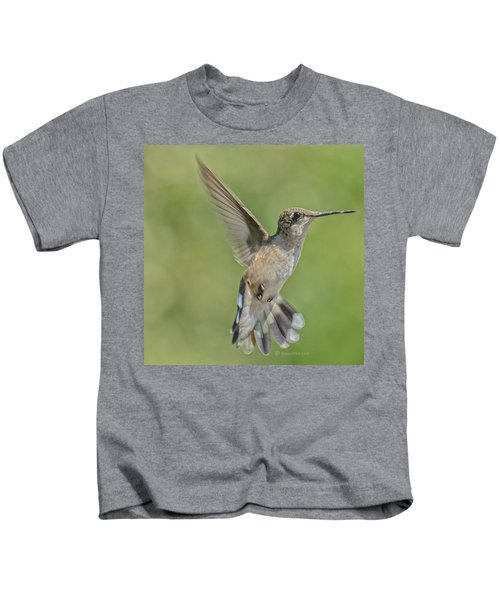 Untitled Hum_bird_four Kids T-Shirt