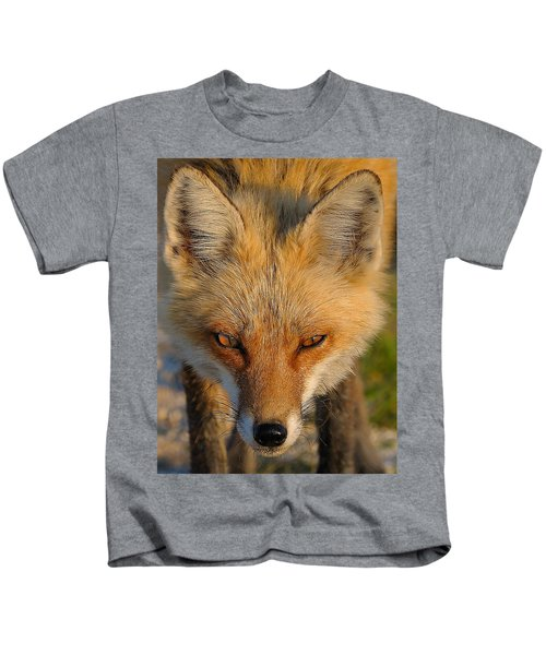 Kids T-Shirt featuring the photograph Vixen by William Jobes
