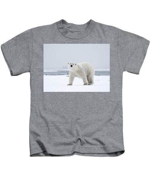 Watchful In The Arctic Kids T-Shirt