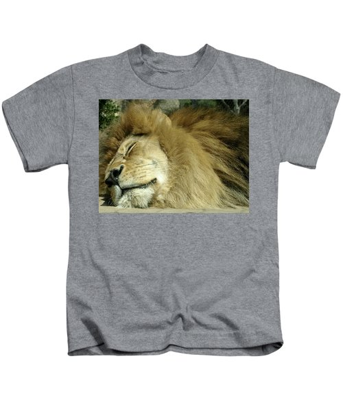 We All Like To Pass As Cats Kids T-Shirt