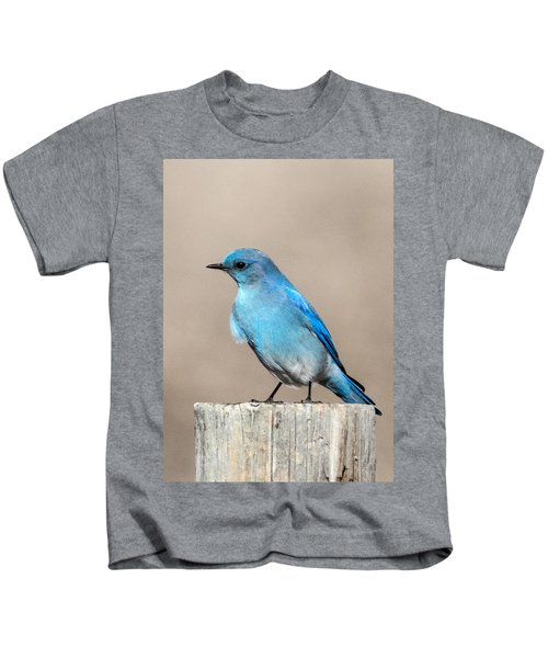 Mountain  Bluebird Kids T-Shirt