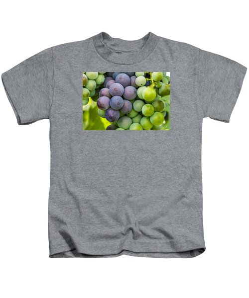 Wine Grapes Close Up Kids T-Shirt