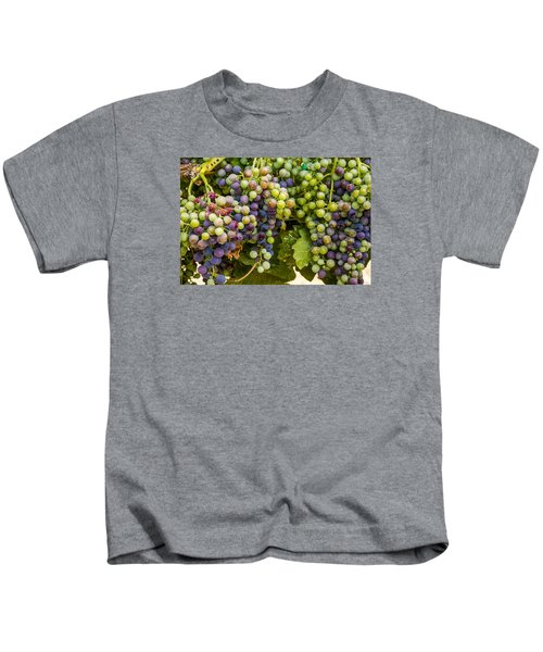 Wine Grapes On The Vine Kids T-Shirt