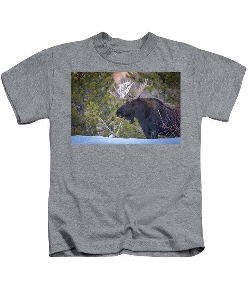 Winter's Arrival  Kids T-Shirt